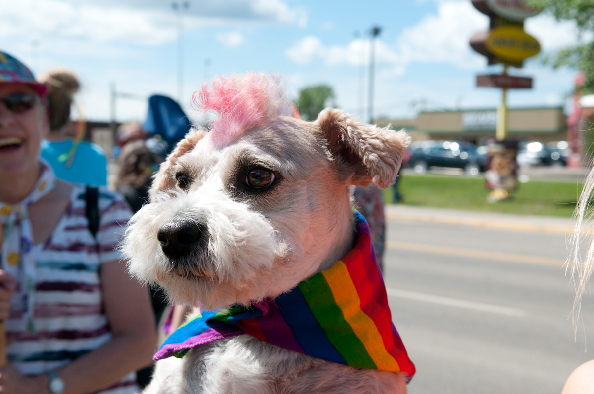 Brodie sports a rainbow mohawk at the parade